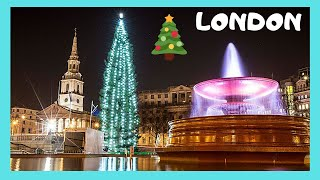 Norwegian Christmas Tree for London at Trafalgar Square