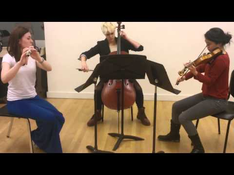 Trio for Flute, Violin, and Cello - Composition by Matthew Plaza