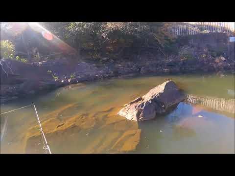 Fishing | Carpenter Dam | AR | Family