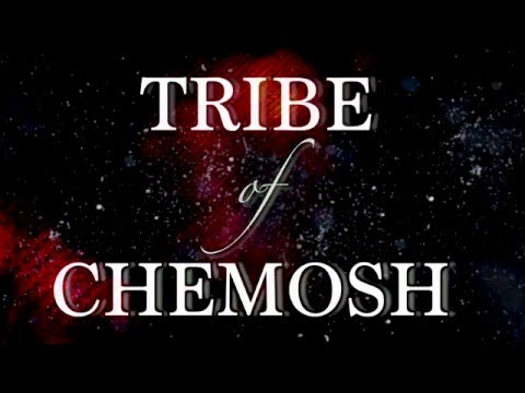 Dawn of Ashes - Tribe of Chemosh (OFFICIAL LYRIC VIDEO)