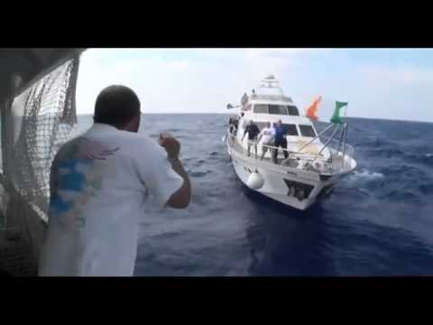 "Raw footage from Gaza-bound ""Freedom Waves"" ships"