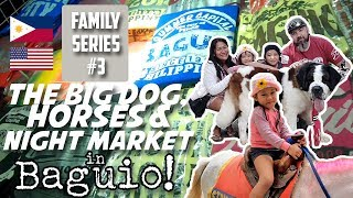 Baguio! Big Dog, Horses & Night Market! American in Philippines!