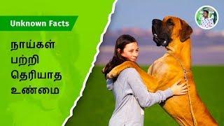 நாய்கள் பற்றி தெரியாத உண்மை | Unknown facts about dogs | bala | Naan thaan bala