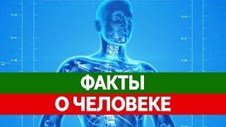 Интересные ФАКТЫ О ЧЕЛОВЕКЕ. Вся правда о человеке!(, 2015-10-14T07:35:30.000Z)