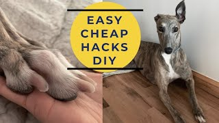 HOW TO TRIM DOG NAILS | FOR BIG DOGS! | STEP BY STEP EASY DIY