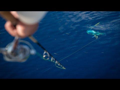Florida Keys Mahi Mahi Dolphin Offshore Fishing In A Bay Boat!