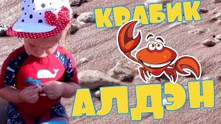 Играем на пляже с крабиком Алденом | Playing on the beach with crab Alden