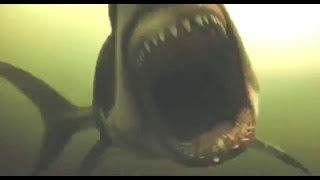 All Creature Effects #4: Shark Night
