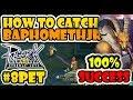 Baphomet Jr How To Catch Pet 100% Success! - Ragnarok Eternal Love Mobile