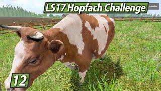 LS17 HOPFACH 🚜 Schwarze Affen und PC BS ► #12 LANDWIRTSCHAFTS SIMULATOR 17 Challenge