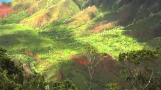 Kaldi specialty koffie: Hawaii Kona