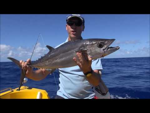 Coral Sea fishing Video!! Abington Reef!! Part 1!!