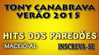TONY CANABRAVA VERÃO 2015 - CD COMPLETO - HITS DOS PAREDÕES