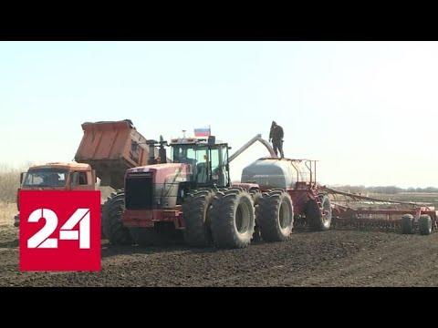 Богомаз: хороший старт посевной - Брянская область должна получить не меньше 2 миллионов тонн зерна