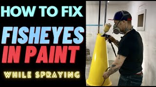 HOW TO FIX FISΗEYE PAINT PROBLEM WHILE SPRAYING