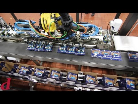 Robotic Case Packer For Pouches