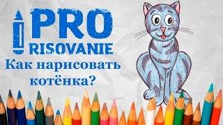 Видеоурок Рисуем котёнка