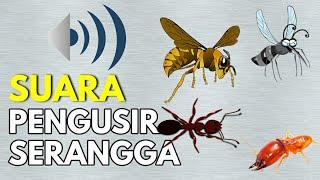 Ultrasonic Suara Pengusir Serangga Paling Ampuh