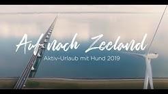 Auf nach Zeeland - Aktiv-Urlaub mit Hund 2019