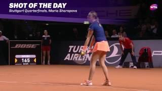 2017 Porsche Tennis Grand Prix Quarterfinals | Shot of the Day | Maria Sharapova
