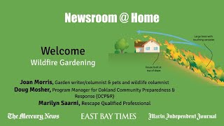 Newsroom @ Home: Wildfire Gardening