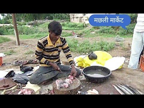 Popular variety of Fresh water fish in Machhli bazar or Fish market Paratwada D : Amravati