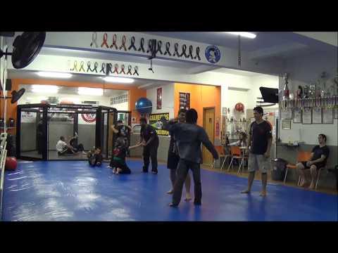 Krav Maga Red Lion Association sensei Wilson Cruz  treino graduação Faixas 03 2015