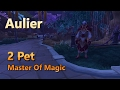 Aulier Master Of Magic Family Familiar Master Of Pets 2 Pet Leveling Strategy