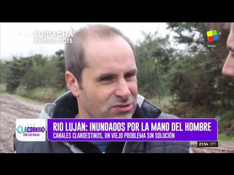 Río Luján: contaminación industrial y mortandad de miles de peces