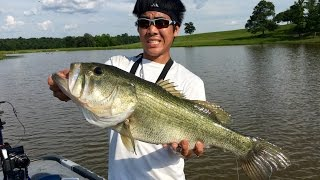 HUMONGOUS Bass on Spinnerbaits!!! Fishing in Texas (ft. LunkersTV)