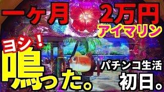 パチンコ生活【1日目】一ヶ月2万円で無くなったら即終了のガチンコ勝負を始めます。