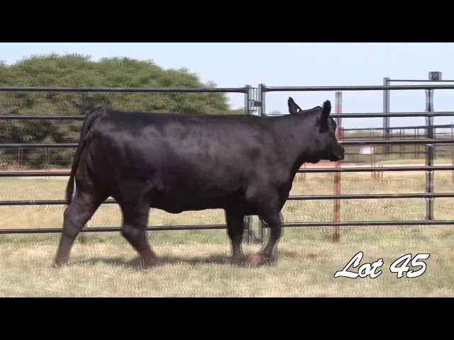 Pollard Farms Lot 45