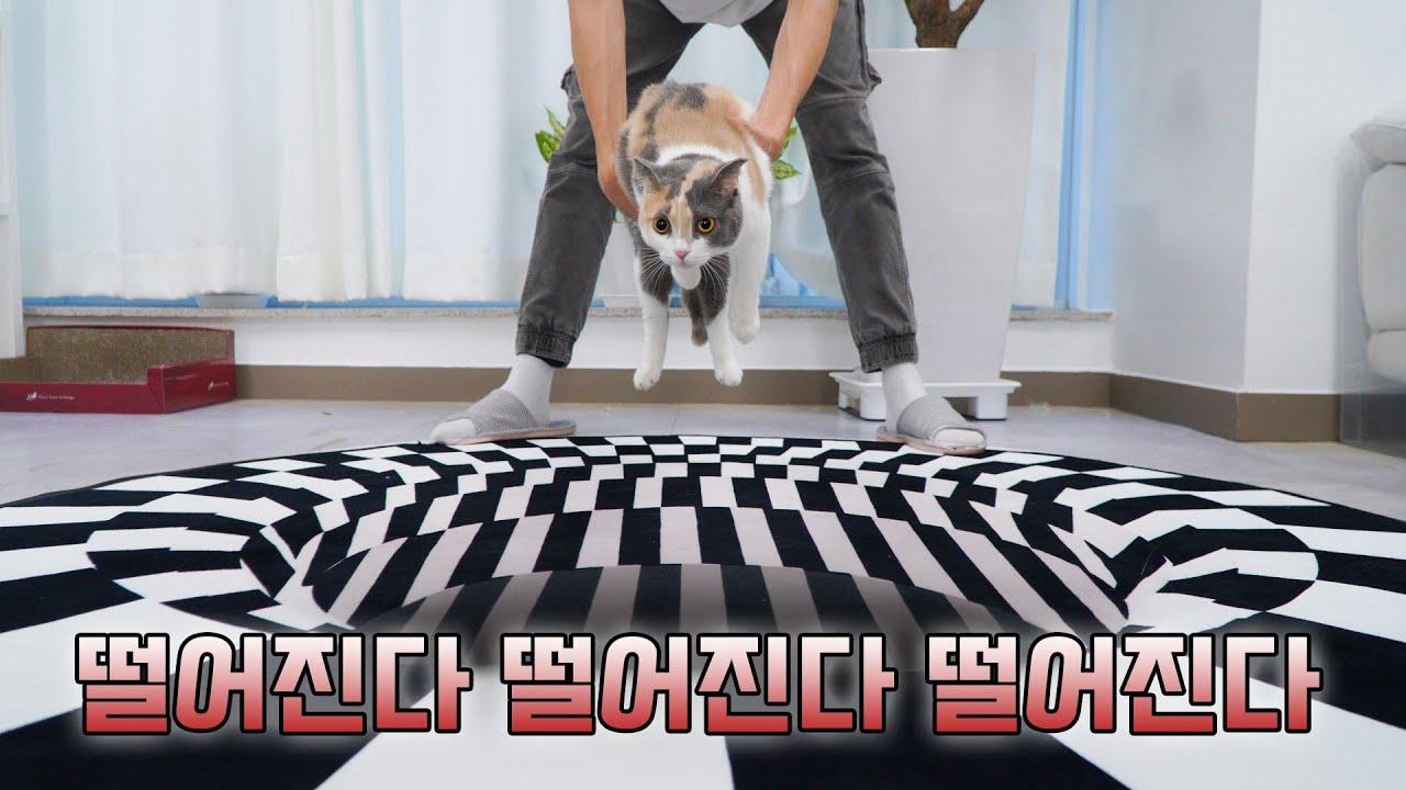 몰카 ㅋㅋㅋ 갑자기 바닥에 구멍이 뚫린다면? | 고양이산책