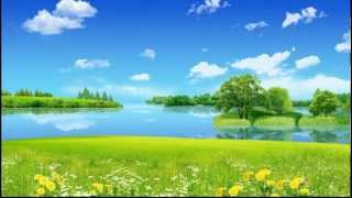 Johann Strauss Jr. - Pizzicato Polka