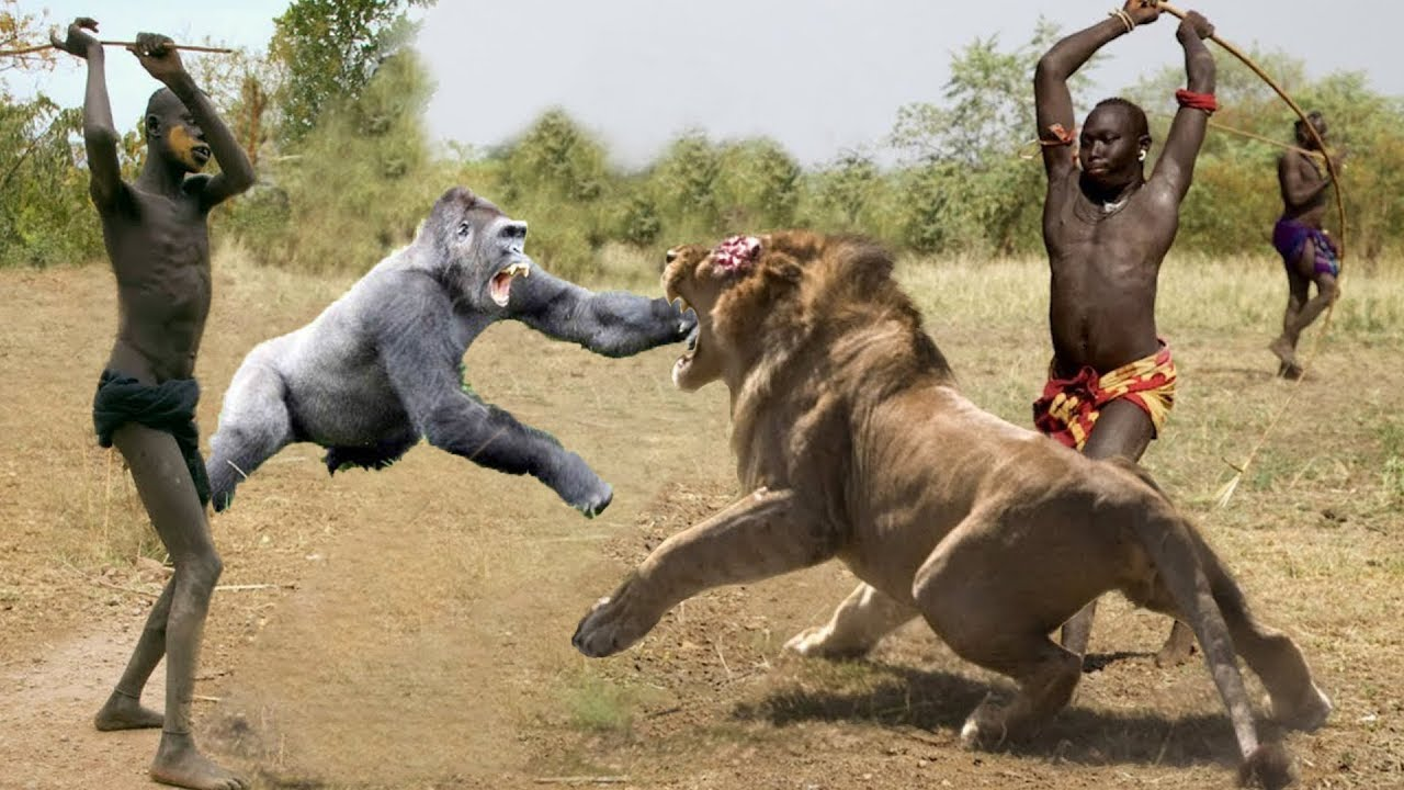 Hunters and Predators of the Planet Wild Animals Attacks - Wild Animal  Fights Caught On Camera - YouTube