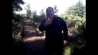 Abernethy.forest.with.david.main.wmv