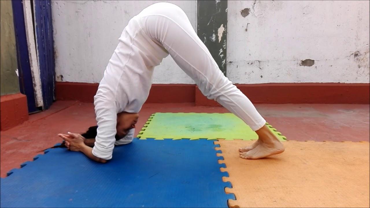 Serie Purna Yoga Integral Con Posturas Intermedias Y Complementarias Primeros 20 Enganches Youtube