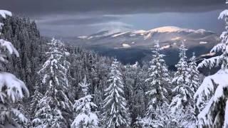 Антонио Вивальди.  Времена года. Зима (3 части)(, 2011-11-13T15:38:17.000Z)