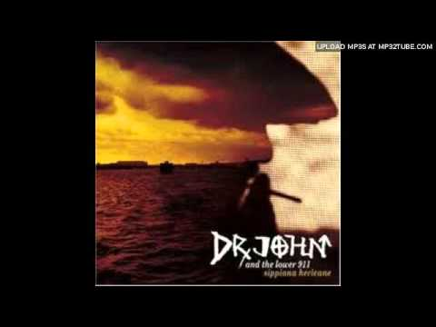 Dr. John & the Lower 911 - Calm In The Storm