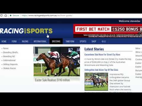 Australian Horse Racing, Why UK Punters Should Look At It.