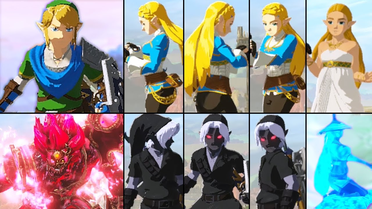 Hyrule Warriors Age Of Calamity All Characters Idle Animations Hd Dark Link Youtube