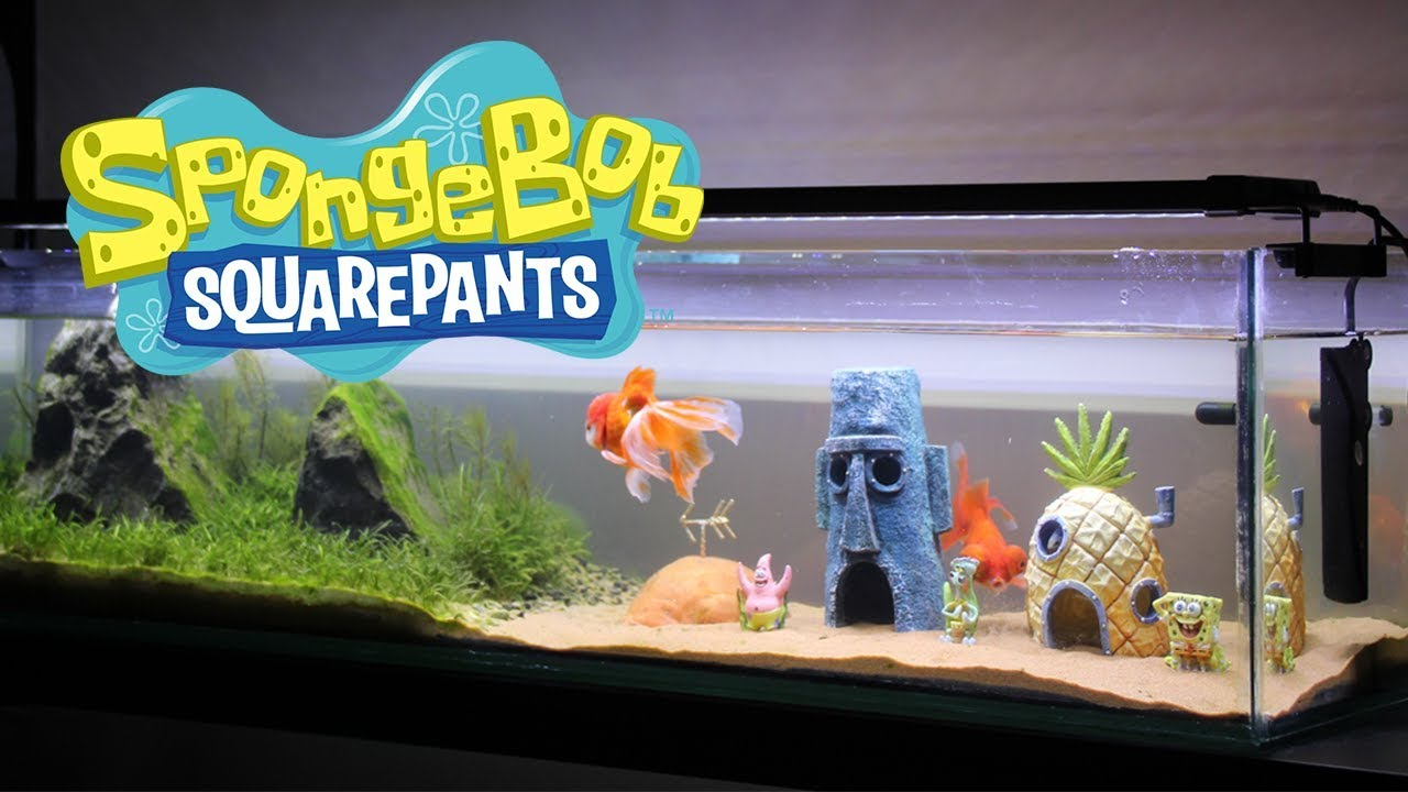Building a SpongeBob Themed Aquarium (from scratch) - YouTube