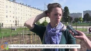 Le jardin partagé de la Morlande à Avallon (89)