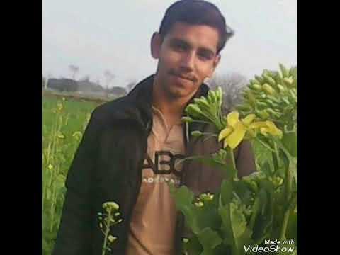 Sad Song Zeeshan Naveed Sahu