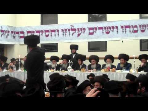 Tosher Sheva Brachos in Boro Park