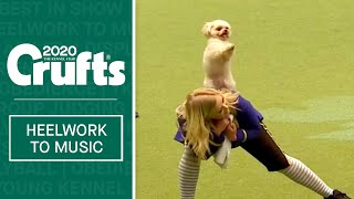 Magical Beauty and the Beast routine at Crufts 2020