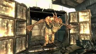 Fallout 3 vs New Vegas - Welcome To The Wastes