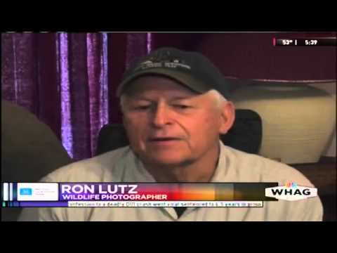 Ron Lutz Photography WHAG TV Interview