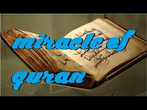 Compilation of Linguistic Miracles | Can not be a coincidence | Miracles of Islam