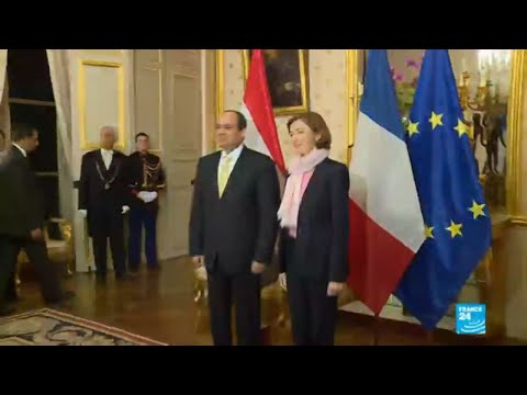 Egyptian president Al-Sisi in France: Macron faces human rights test in talks